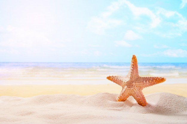 https://anilabashllari.com/wp-content/uploads/2019/06/starfish-summer-sunny-beach-ocean-background-travel-vacation-concepts_1423-276-1.jpg
